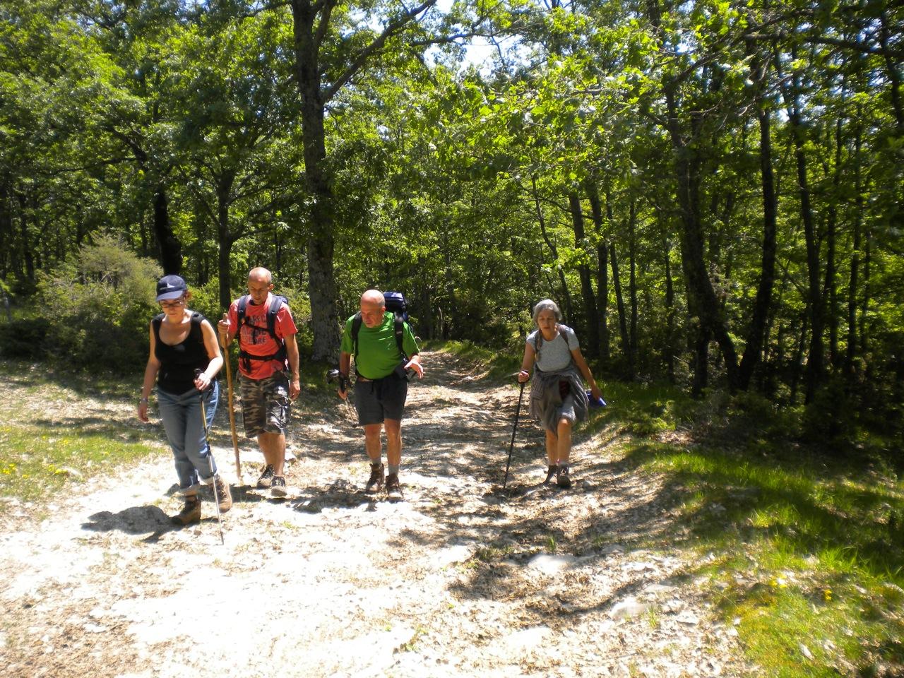Escursioni in montagna for Cabine vicino montagna di sangue