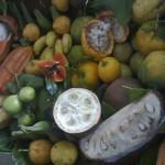 Frutta brasile