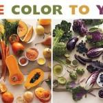 Aggiungi colore alla tua vita